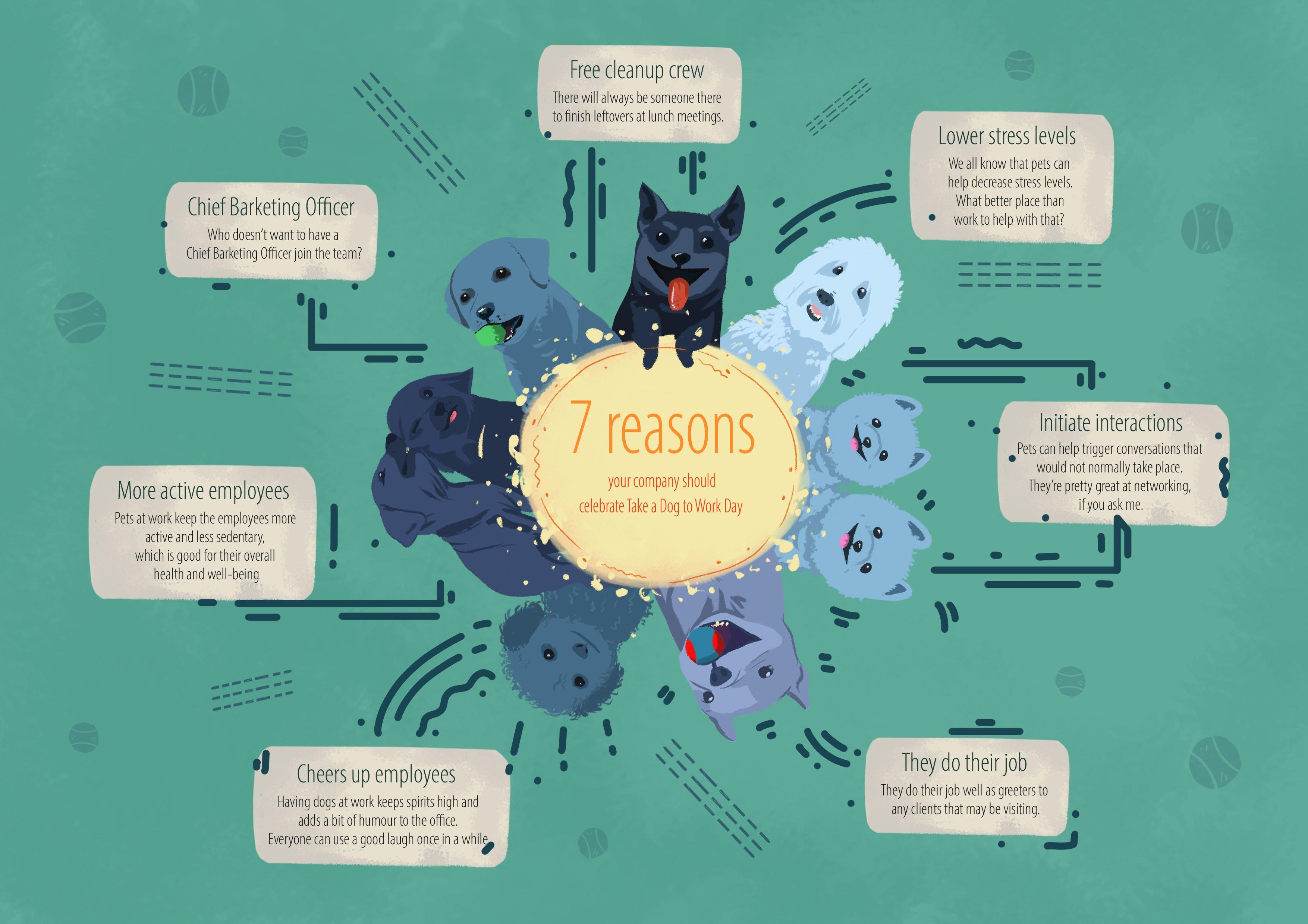 7 reasons _dog